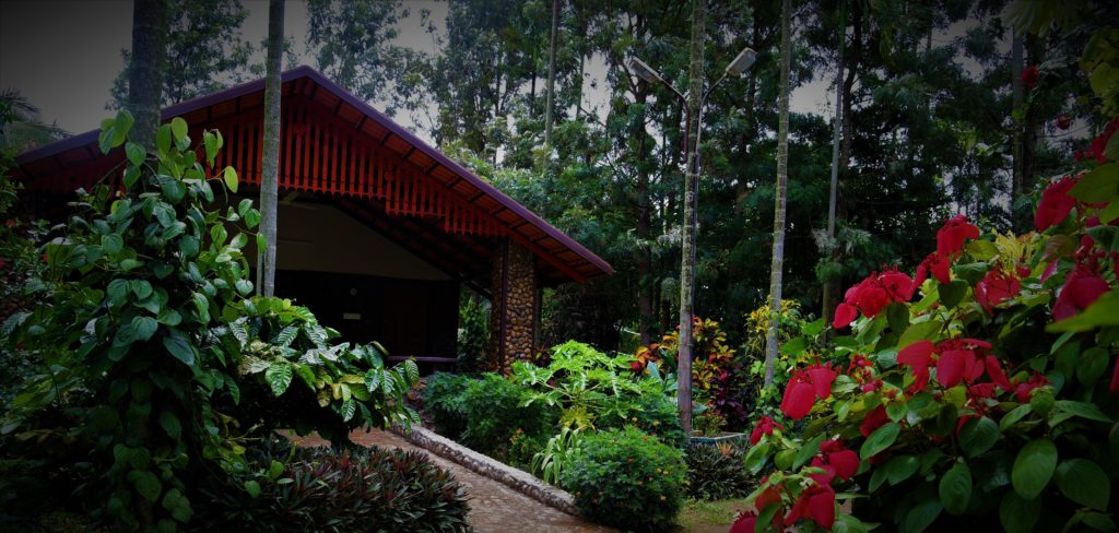 budget cottages chikmagalur