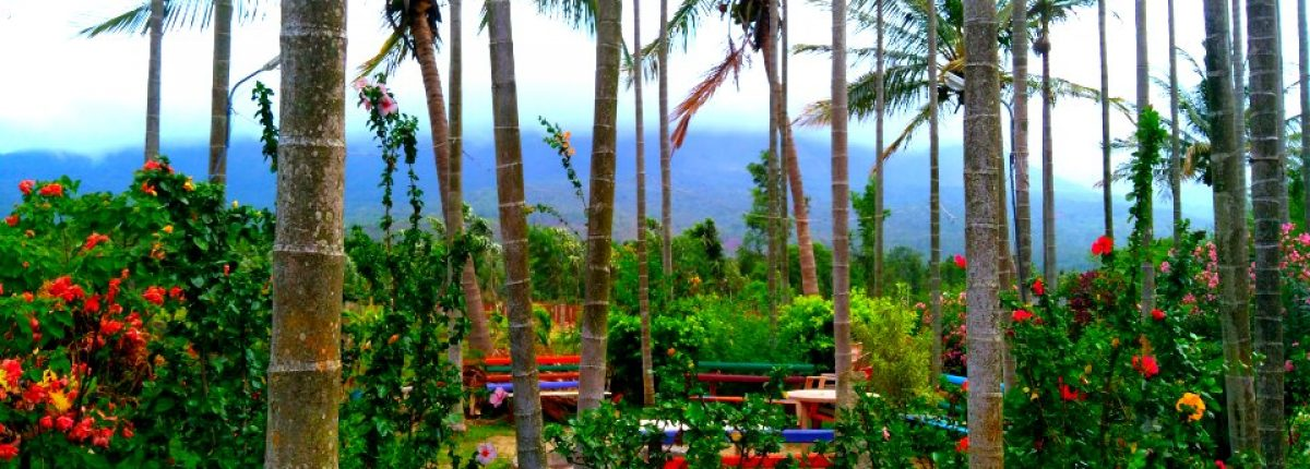 chikmagalur resort & homestay for couples